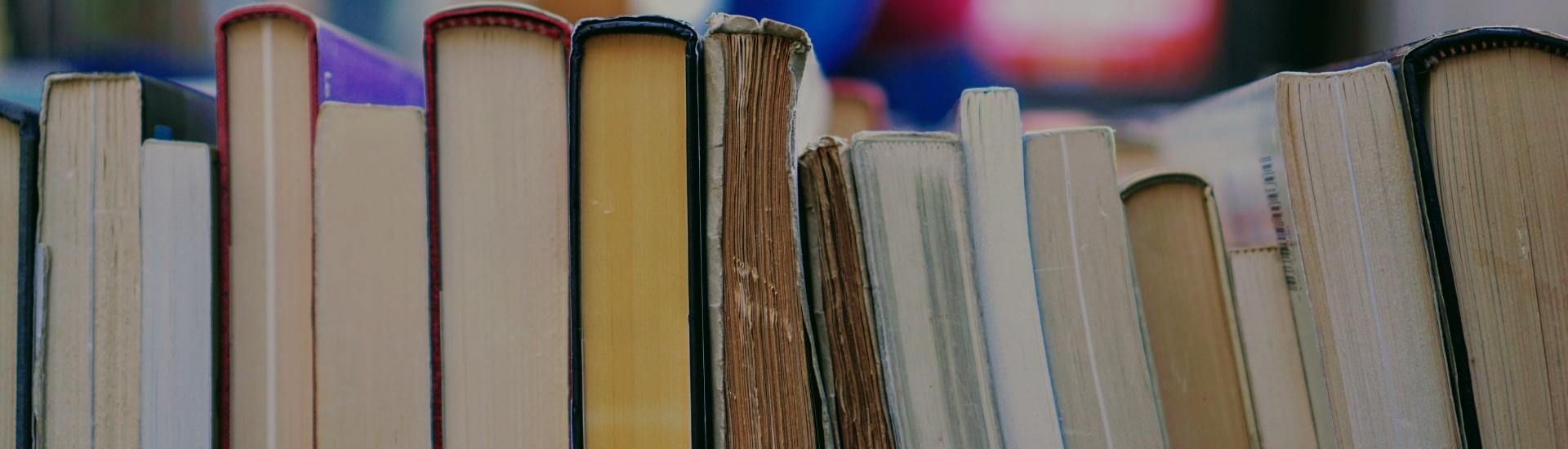 libri usati libraccio