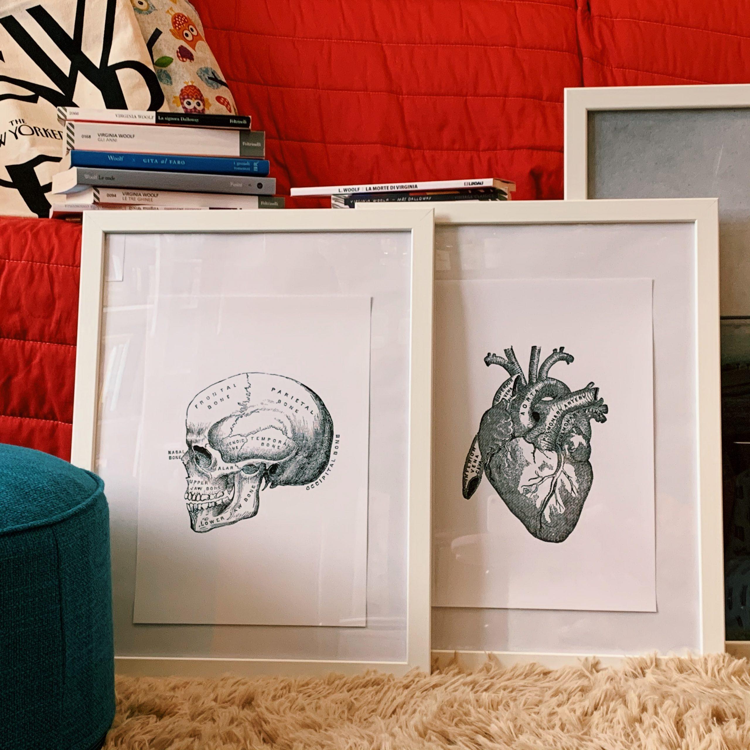 poster desenio skull vintage heart anatomy gallery wall
